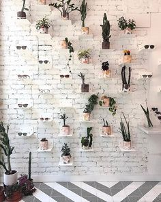"KREWE OPTICAL, Historic District, Savannah, Georgia, ""It's the little things that makes the perfect shelf"" Pharmacy Design, Retail Design, Optometry Office, Eyeglass Stores, Eyewear Shop, Glasses Shop, Optical Shop, Sunglasses Store, Clinic Design"