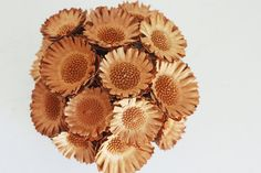 NEW protea mound dried flower arrangement by floresdelsol on Etsy, $45.00