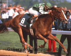 Genuine Risk (February 15, 1977 – August 18, 2008) was a chestnut mare who won the 1980 Kentucky Derby and was the first filly to ever finish in the money in all three U.S. Triple Crown races. Ridden by Jacinto Vasquez, she finished second in the Preakness and Belmont Stakes. She was foaled in Kentucky.