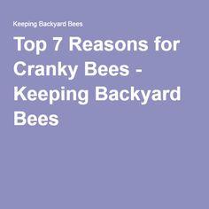 Top 7 Reasons for Cranky Bees - Keeping Backyard Bees