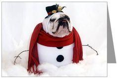Google Image Result for http://www.bulldog.dogbreed-gifts.com/christmas/bulldog-christmas-cards3.jpg
