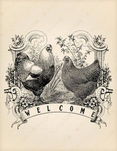 Rooster Vintage Welcomme Image Decorative Wall Ceramic Tile or 6 In Arte Do Galo, Etiquette Vintage, Iron On Fabric, Images Vintage, Motifs Animal, Chickens And Roosters, Vintage Labels, Transfer Paper, Heat Transfer