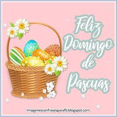 30 imagenes bonitas para regalar en Pascuas 2019 Happy Easter, Beautiful Images, Place Card Holders, Messi, Check, Easter Bunny, Easter Eggs, Happy Easter Day