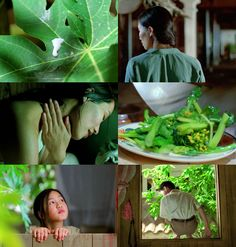 The Scent of Green Papaya, 1993