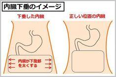 内臓が本来の位置より下に落ちてしまう内臓下垂、主に食事制限だけで痩せた人や筋力不足の人が陥りやすい症状ですが、放置しておくと便秘や腹痛、更にポッコリお腹を作ってしまうのです。今回は内臓を持ち上げる事でポッコリ下腹を解消する3ステップについてご紹介いたします。