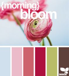 cloor palette for living room I want this for my living room colors. Colour Schemes, Color Combos, Pink Tiles, Color Palate, Design Seeds, World Of Color, Color Blending, House Colors, Room Colors