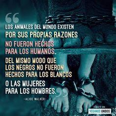 #Frases #Alice #Walker