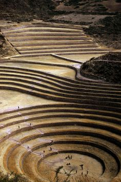Moray (Inca ruin), Cusco, Peru / The purpose of these circular depressions is uncertain, but their depth and orientation with respect to wind and sun creates a temperature difference of as much as 15 °C between the top and bottom.This large temperature di Machu Picchu, Ancient Ruins, Ancient History, Inca Empire, Colani, Inka, Equador, South America Travel, Archaeological Site