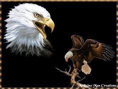 ANIMATED NATIVE AMERICAN  GIFS photo: Native American TheEagles.gif
