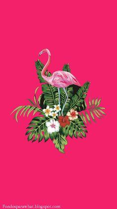 3 Fondos de Pantallas en Tonos Rosas #Flamenco