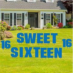 Lego Birthday, Vinyl Banners, Sweet Sixteen, Balloons, Yard, Display, Amazon, Decoration, Pink