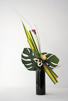 Types of Houseplant Bugs and Methods to Check Their Infestation Ikebana Contemporary Flower Arrangements, Tropical Flower Arrangements, Creative Flower Arrangements, Flower Arrangement Designs, Church Flower Arrangements, Tropical Flowers, Flower Designs, Exotic Flowers, Purple Flowers