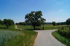 Wanderung am Uferweg zum Marienschlucht. Blick auf Wiese und Felder.