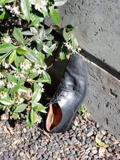 Men's dress shoe...last seen climbing a wall in San Fransisco, USA.