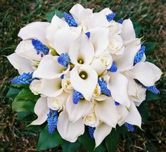 Calla lily and hyacinths Calla Lily Flowers, Calla Lily Bouquet, Flower Bouquet Wedding, Bridesmaid Bouquet, Calla Lilies, White Flowers, Hyacinth Bouquet, White Roses Wedding, Flower Decorations