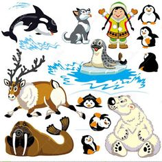 Illustration of set with cartoon animals of arctic Isolated pictures for little kids vector art, clipart and stock vectors.