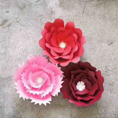Giant paper flower templates series, free SVG, DXF and PNG cut files Rolled Paper Flowers, Crepe Paper Roses, Tissue Flowers, How To Make Paper Flowers, Large Paper Flowers, Paper Flower Wall, Giant Paper Flowers, Fabric Flowers, Homemade House Decorations