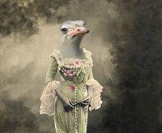 Maya - Vintage Ostrich 5x7 Print - Anthropomorphic - Altered Photo - Gift Idea - Bird Art - Photo Collage Art - Whimsical Art