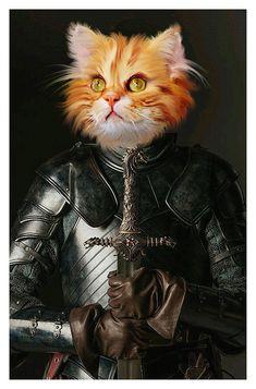 Doodle Baby, Royal Animals, Bulldog, Cat Posters, Fantasy Photography, Jolie Photo, Pet Portraits, Book Art, Anime Art