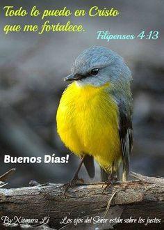 Los ojos del Señor están sobre los justos...Filipenses 4:13