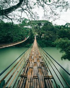 Bamboo bridge photo by Mickael Goupil (@mickaelgoupil) - #Bamboo #bridge #Goupil #Mickael #mickaelgoupil #Photo