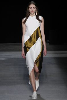 Narciso Rodriguez Fall 2016 Ready-to-Wear Fashion Show - Romy Schoenberg
