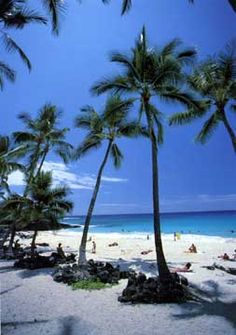 Majic Sands Beach - Kona, Hawaii.   Imagine laying on the beach all day :)   Go to www.YourTravelVideos.com or just click on photo for home videos and much more on sites like this.
