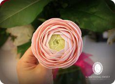 Gumpaste Ranunculus by Katie's Something Sweet, via Flickr