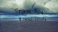 Storm Boy Novel Study PowerPoint Presentation - $6 - 25 pages Vocabulary List, Authors Purpose, Comprehension Questions, Australian Animals, Figurative Language, Literacy, Presentation, Novels, Study