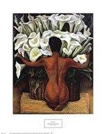 Nude with Calla Lilies  Fine Art Print