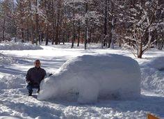 Polar bear snow sculpture by Dawn Gould