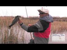 Bass Fishing Spinnerbait Tips andTricks