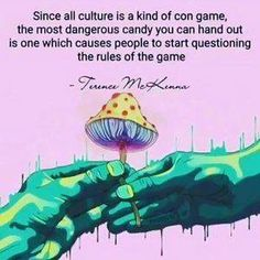 The real reason cannabis and psychedelics are illegal. Trippy Quotes, Psychedelic Quotes, Terence Mckenna, Hippie Quotes, Reiki Healer, Positive Vibes Only, Welcome To The Family, Positive Mindset, Spiritual Awakening