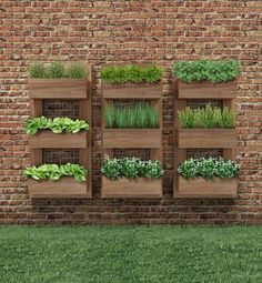 Vertical Gardens - Once you've designed your garden, pick the plants that you want to grow during each season. There's no better solution than to bring a vertical garden. While arranging a vertical garden… Vertical Herb Gardens, Vertical Garden Diy, Outdoor Gardens, Vertical Planter, Outdoor Wall Planters, Herb Planters, Small Garden Vegetable Patch Ideas, Vegetable Gardening, Planters On Fence
