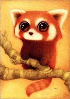 cute red panda illustration - Google Search
