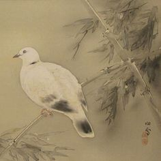 """iamjapanese: """" HASHIMOTO Kansetsu(橋本関雪 1883-1945) A dove up on the branches 枝上の鳩 1900 """""""