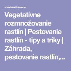 Vegetatívne rozmnožovanie rastlín   Pestovanie rastlín - tipy a triky   Záhrada, pestovanie rastlín, ovocných a okrasných stromov, záhradná architektúra   LepšíDomov.sk