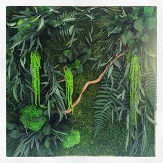 Agencement végétal, végétaux stabilisés, mur végétal, tableau végétal, mousse stabilisée. Réalisation Adventive. Interior plant Designer #moss #greenwall #murvégétal #green #plantdesigner #gardenindoor