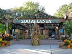 There are so many great things to do and see in Atlanta.  Couponsforthezoo.com gets you discounted admission to all of them.  Don't miss out on Zoo Atlanta!