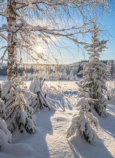 Talvi Scenery Pictures, Winter Pictures, Mountain Landscape, Winter Landscape, Snow Photography, Quelques Photos, Winter Magic, Winter's Tale, Winter Scenery