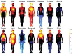 True Colors: Research Sheds Light On Body Emotions | World of Psychology