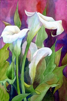 Calla Lilies, watercolor, Georgia O'Keeffe