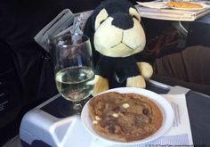 Choosing the best flight for your next trip - Maurice insists on flying only those airlines that provide him with chocolate chip cookies and wine. Best Flights, Chocolate Chip Cookies, Teddy Bear, Good Things, Wine, Travel, Food, Viajes, Teddybear