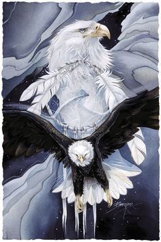 Bergsma Gallery Press :: Paintings :: Nature :: Birds :: Eagles :: You Can Catch the Wind - Prints Native American Pictures, Native American Artwork, Eagle Artwork, Eagle Drawing, Eagle Painting, Eagle Pictures, Eagle Tattoos, Animal Totems, Native Art