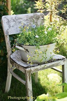 Old Chair Flower Garden Rustic Gardens, Outdoor Gardens, Dream Garden, Garden Art, Jardim Natural, Garden Front Of House, Pot Jardin, Old Chairs, Vintage Chairs