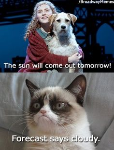 Grumpy cat Annie musical funny humor - Grumpy Cat - Ideas of Grumpy Cat - Grumpy cat Annie musical funny humor Funny Cat Quotes The post Grumpy cat Annie musical funny humor appeared first on Cat Gig. Grumpy Cat Quotes, Grump Cat, Funny Grumpy Cat Memes, Cat Jokes, Animal Jokes, Funny Animal Memes, Cute Funny Animals, Funny Animal Pictures, Funny Cats