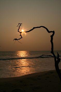 Sunset in Gabon Places To Travel, Places To Go, Romantic Destinations, Safari Animals, Republic Of The Congo, Ciel, Scenery, Around The Worlds, Sunrises