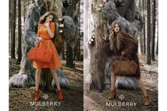 Mulberry Fall 12