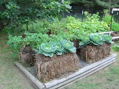 Straw Bale Gardens Complete Guide To Growing A Bountiful Garden Without Weeding, Bending or Working Too Hard!