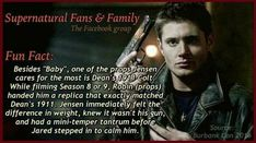 Jensen throwing a tantrum, even a mini one.hard to imagine>>> that colt is fn classic to deans character Jared Padalecki, Misha Collins, Jensen Ackles, Supernatural Facts, Supernatural Imagines, Emmanuelle Vaugier, Super Natural, Superwholock, Fun Facts